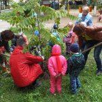 Национальный день посадки леса пройдет в Казахстане
