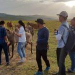 Казахстанским фермерам помогут находить свой скот