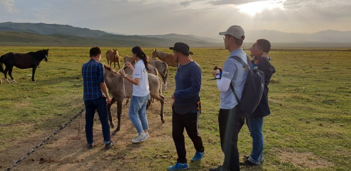Разработчики тестируют решение на пастбище в Казахстане