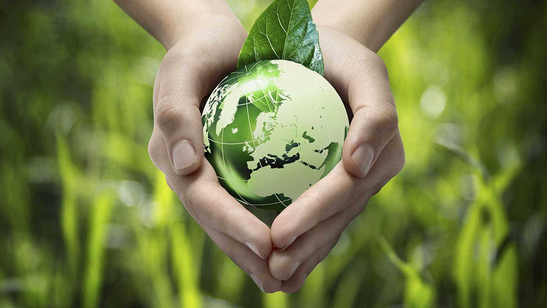 Eco-friendly – очередной тренд или необходимость   Бизнес-мир, деловой журнал Казахстана